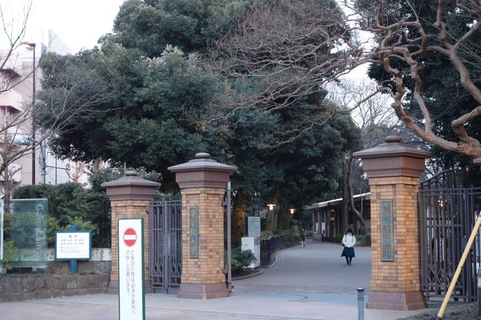 起源は、幕末の京都に設けられた公家の教育機関にあたり、皇族方が通われていたことでも知られている、歴史深い「学習院大学」。目白駅から歩いてすぐのところにあります。