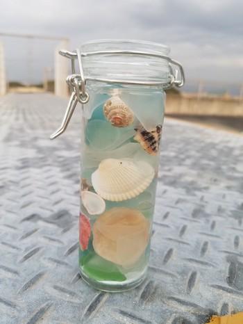 シーグラスや貝殻を植物に見立ててハーバリウム(植物標本)として使ってみるのも◎保存瓶の中には、シリコンやハーバリウム専用のオイルを入れましょう。