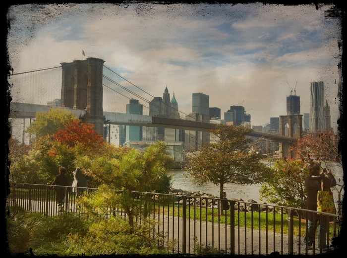 ニューヨークのシンボルの1つでもあるブルックリン橋のたもとにあるBrooklyn Bridge Park。34ヘクタールある敷地内には、マンハッタンを眺めながらお散歩出来る遊歩道や、庭園、ピクニックエリアなどが設けられています。