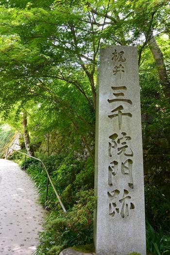 京都駅から一時間ほど、市街地から離れた京の里山・大原にある「三千院」。色濃い自然を楽しむことができ、京都有数のパワースポットとしても有名な三千院のあじさいは、京都一の景色と称されるほどなのだとか。