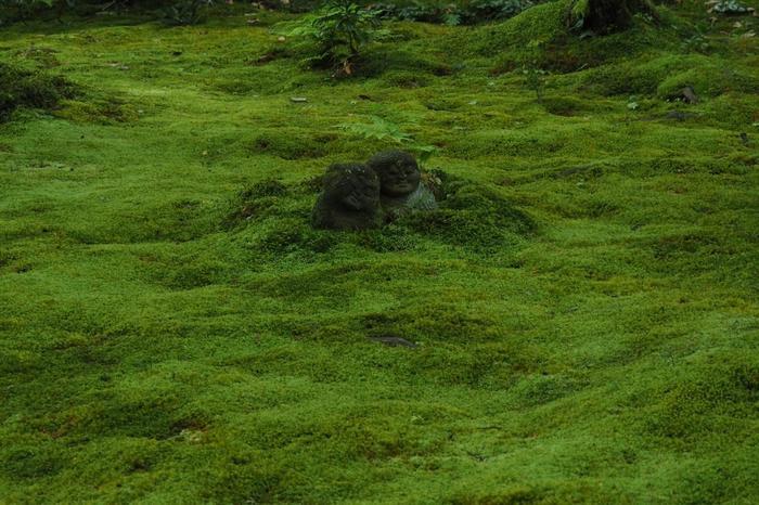 境内には6体のわらべ地蔵さんが居て、見つけるとそれだけでご利益がありそう♪雨の後は苔はキラキラ光り、梅雨ならではの美しい景色にで出会えますよ。 訪れるのにはちょっぴり時間がかかりますが、京都の自然をめいっぱい楽しみに訪れてみてはいかがでしょうか。