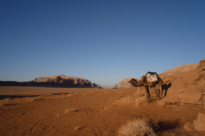 ヨルダンの南部に位置し、サウジアラビアとの国境くに広がる砂漠地帯、ワディ・ラムは赤茶色の巨岩や砂利の多い岩砂漠です。映画「アラビアのロレンス」のロケ地でもあり、砂漠の民、ベドウィンたちはこの地で生活をしています。