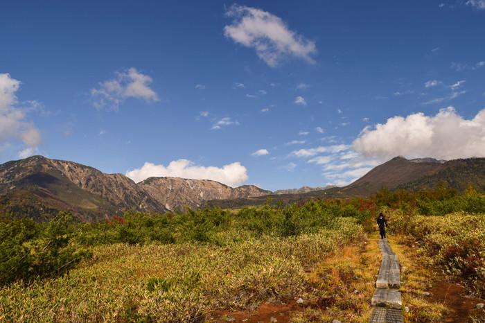 東西9キロメートル、標高1600~2100メートル、南北3キロメートルにも及ぶ弥陀ヶ原は、美女平と室堂平とのほぼ中間地点に位置する高原です。