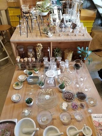 花瓶にしたり、ハーブやスパイスの保存容器など、使い方は無限に広がりますね。