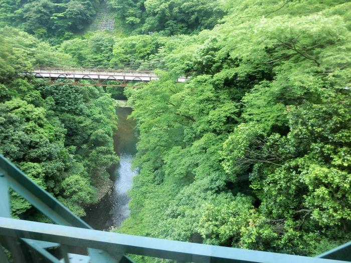 そして、川のせせらぎや鳥の囀り、風の音といった自然音は、頭の中のネガティブなお喋りを黙らせ、心地良い一時をもたらしてくれます。【箱根登山電車・塔ノ沢と大平台間にある「出山鉄橋」からの眺め】