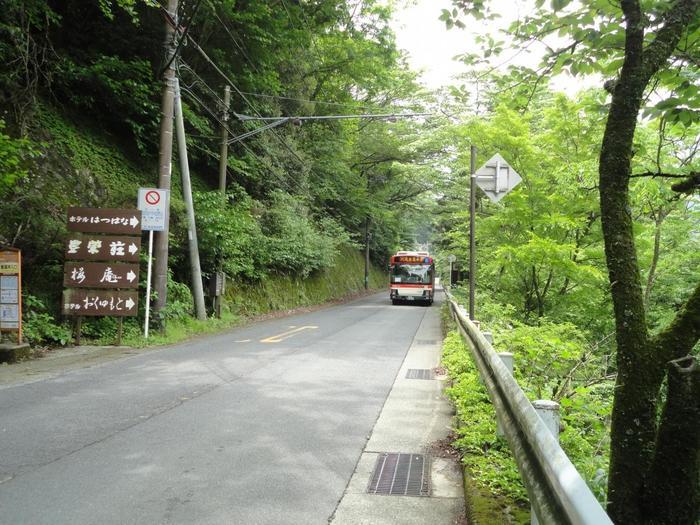 バスの良さは、鉄道やケーブルカーでは味わえない、地域ならではの雰囲気や景色を身近で眺められること。そして、気に入った場所があったら気楽に乗降できることです。【箱根湯本近辺を走る「箱根登山バス」】