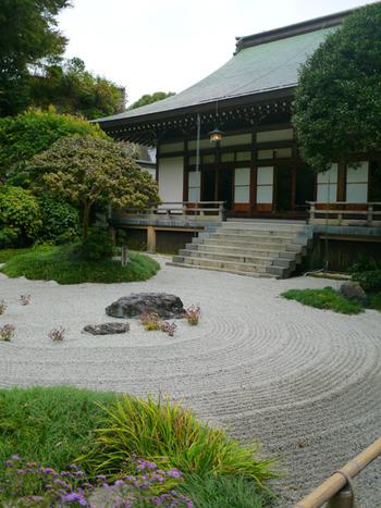 入り口から右手側に釈迦堂、そして本堂があります。立派な枯山水もあり、夏場は白い花が可愛らしいオオテマリなど季節の花も楽しむことができるお寺なんです。