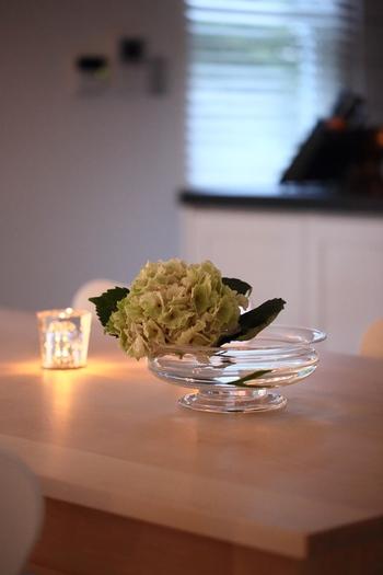 あじさいを短めにカットして、ガラスの器に飾っても◎。空間に素敵な雰囲気を添えてくれますよ。