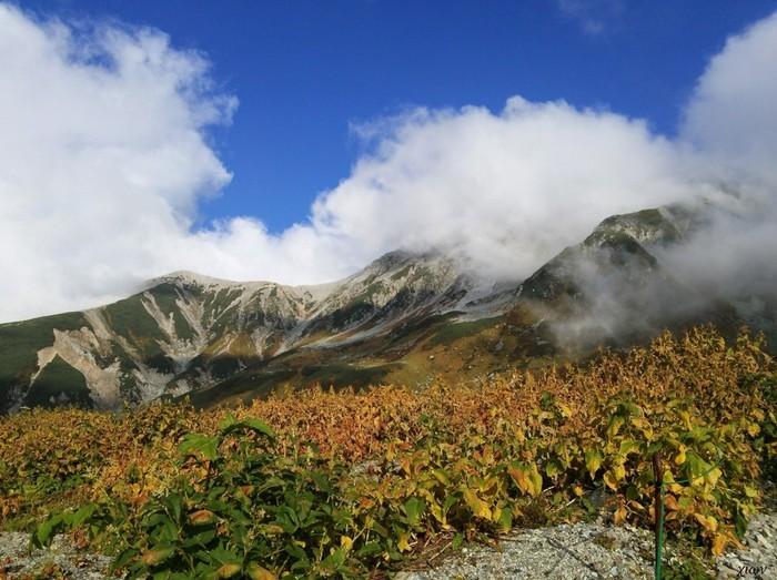標高3000メートル級の山々が眼前に迫る室堂平は、標高約2450メートルの位置にある高原です。ここでは、立山・黒部アルペンルートを散策する観光客だけでなく、立山・剣岳といった日本を代表する名峰登頂を目指す登山者でも賑わっています。