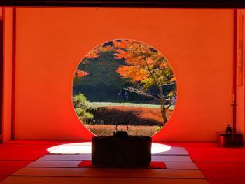 北鎌倉駅から歩いて20分のところにある明月院(めいげついん)  「悟りの窓」とも言われる円窓がある北鎌倉にある明月院の本堂。秋の紅葉や美しい景色をまるで絵のように愛でることができるのはあまりにも有名ですね。