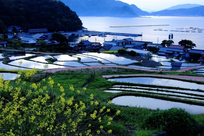 稲の作付前の棚田の美しさは傑出しています。一枚一枚の水田に貼られた水は、鏡のように空の色を映し出しており、周囲は幻想的な雰囲気に包まれています。