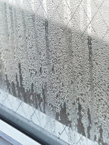 冬は、室内と外の気温差が大きいことが原因で結露ができますが、梅雨は異なります。 梅雨は空気中の水分量が非常に多くなります。その空気が室内に入り込み、建物の低温部分に触れることで、結露が発生します。  そのため、窓だけでなく、押入れやクローゼットの壁面などにも結露は発生し、洋服やバッグが水分を吸い込み、カビの発生源になってしまいます。