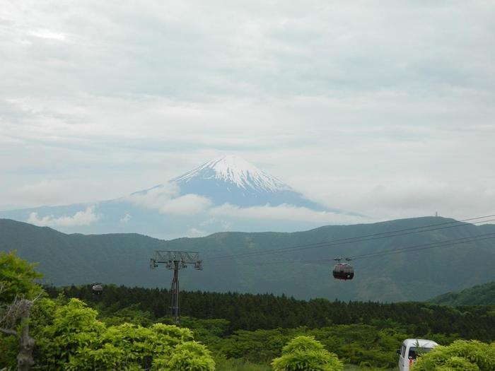 ゴンドラは、全面ガラス張り。標高1,044mの大涌谷を通り、地上130mを走行するため、視界が抜群に開け、箱根ロープウェイならではの眺望が楽しめます。富士山や相模湾はもちろんのこと、空気が済んだ季節には遠く東京スカイツリーまで見渡せ、夏の緑、秋の紅葉と季節それぞれに壮大な景色が広がります。