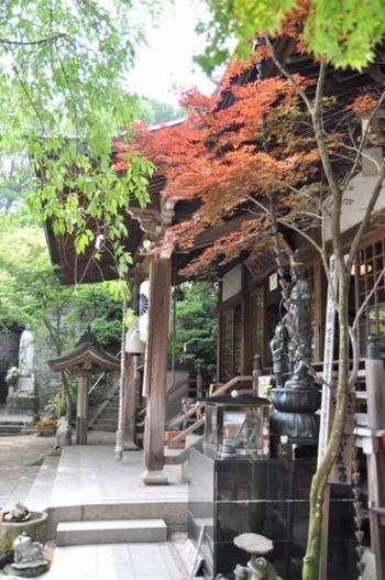 福岡・小郡にある「如意輪寺」は、天平年間に創建されたお寺で、ご本尊は如意輪観音です。別名「かえる寺」と呼ばれ、境内にはかえるの置物やグッズなど、なんと5000体以上もあるんです!