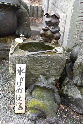 こちらは「水かけかえる」。水をかけることで、悪いことを水に流してくれるそう。