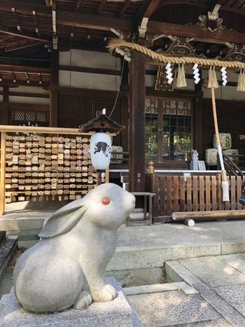 こちらの神社には、神の使いとされてきたうさぎでいっぱい!本殿の前には赤い目のキュートな狛うさぎが鎮座しています。右がオス、左がメスのうさぎで、両方の頭を撫でると、縁結びや夫婦和合のご利益があるそう。