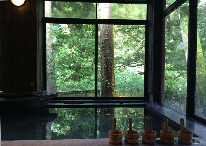 翌朝おみやげとして頂けるのは、箱根湯本の「箱根湯寮」で利用できる日帰り温泉の入浴券とPOLAのアメニティ。イベントが終了して美術館を出た後は、森の中で過ごしたひとときを振り返りながら、ゆったりお湯につかってくださいね。
