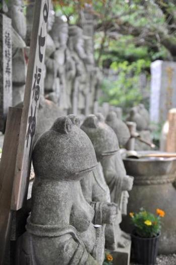 真っ直ぐに前を見つめるかえる…なんとこちらは「かえる七福神」。なんとも珍しい七福神のかえるが見られるのは、このお寺ならではです。