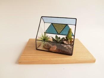 観葉植物をどんな鉢に入れるかによって、見た目の印象はガラッと変わります。今回おすすめしたいのはガラスケース。特に多面体ガラスケースはモダンで洗練された感じが出ます。簡単なのにワンランク上のインテリアとして、部屋の雰囲気をグッとあげてくれますよ。