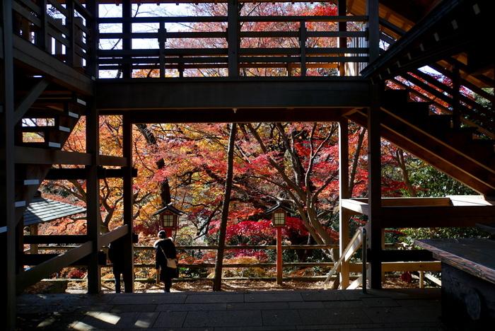 木々が赤や黄色の染まる紅葉の季節も素敵です。