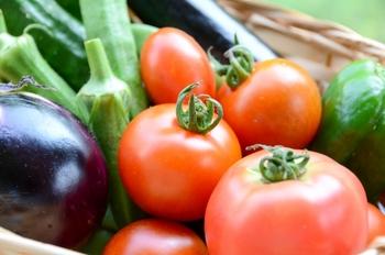 旬の野菜は、体が欲しがる栄養が豊富です。夏野菜には、体のほてりをクールダウンしてくれる栄養素が含まれています。ナス、トマト、きゅうりなど年中手に入る定番食材ですが、栄養豊富な旬のこの時期にこそ毎日食べて体を労わってあげましょう。