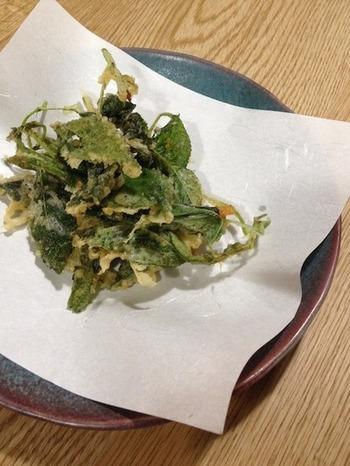 モロヘイヤの天ぷらって、珍しいですね。これが、少しネバネバ感もあっておいしいそうです。気になりますね。ぜひ、試してみましょう。