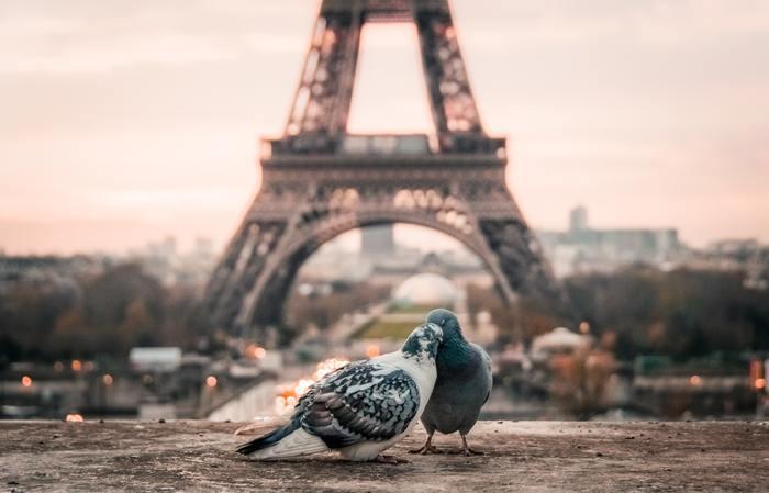 また、同棲生活が法律で守られているフランスでは、結婚という形にとらわれません。 よいパートナーがいるかは尋ねられても、「いつ結婚するの?」とは聞かれないのだそう。  バカンスを大事にして、いつまでもロマンスを忘れず、おばあちゃんになっても恋愛を楽しむ生き方も、とても素敵だとは思いませんか?