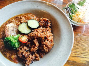人気のメニューはカレー。ご飯は発酵玄米に変更可能なので、試してみるのも良いかも。
