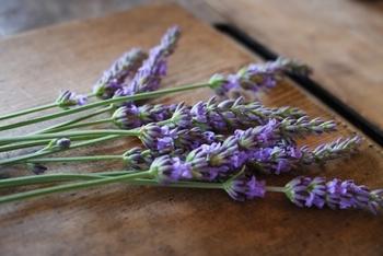 ラベンダーはお花に含まれる水分が少なく乾燥しやすいので、ドライフラワーに向いています。出来上がった後もラベンダーのほのかな香りが漂うので、花びらを集めて小さな巾着に詰めて持ち歩いてもいいですね。