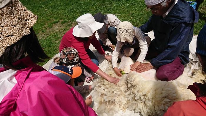 山登りや自然の中の100kmウォーキング、家づくり、天体観測、農業体験etc...シュタイナー学校では、様々な「自然体験」を行います。羊毛を糸にして編み物をしたり、木で器や家具を作ったり、自然に触れ、自ら作ることで、全身全霊で自然と暮らしの調和とは何かを学びます。  体を目一杯使った体験は子ども達の記憶にしっかり残り、「もっと学びたい」という動機付けを自然に生み出すといいます。実践的な思考力も身につくため、問題解決力も育まれていきます。