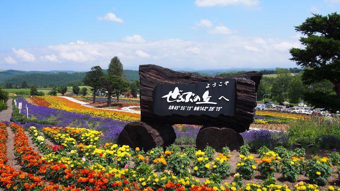 「ぜるぶ」という名前は『かぜ』『かおる』『あそぶ』の各後ろの三文字をとってつけられたそうです。北海道の短い夏を象徴するような言葉ですね。