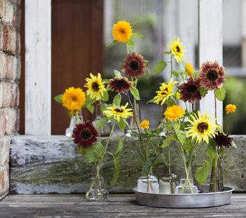 ひまわりやアジサイなど、季節のお花を飾るだけでも夏のしつらいは完成します。小さな瓶に一輪づつお花を挿して、ささやかな彩をプラス。