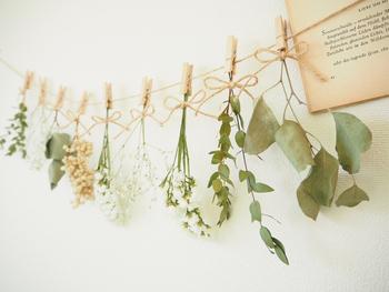 ドライフラワーを作るのに適したお花とそうでないものはありますが、茎ごとドライフラワーにするなら、2〜3分咲きのものを逆さまに吊るして乾燥させるシンプルな方法が最も簡単な方法です。