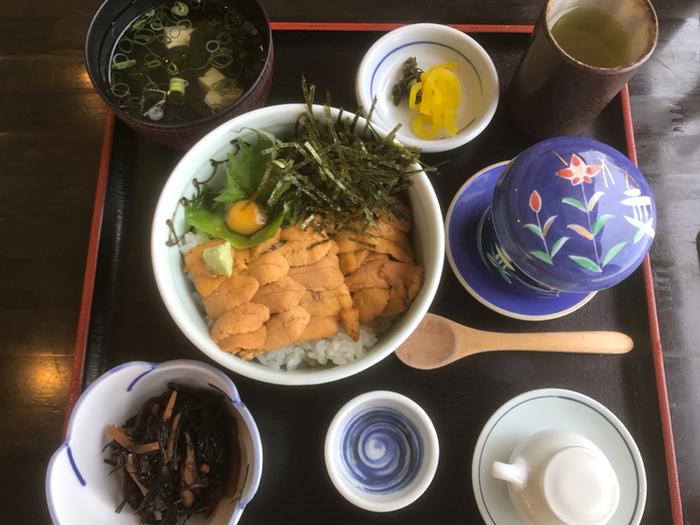 美しく敷き詰められたウニ丼。旅行の醍醐味ともいえる贅沢な一品です。