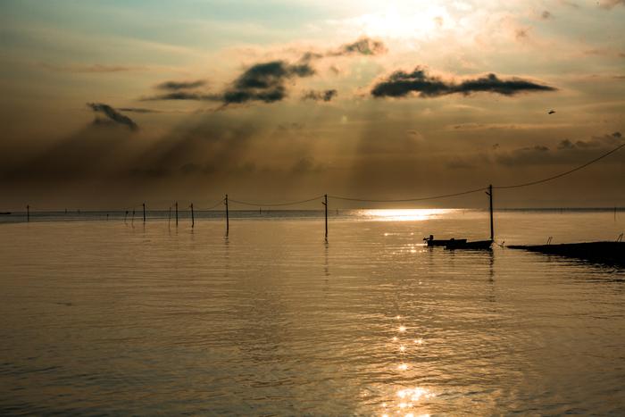光のカーテンが注がれる太良町の美しい海。一見何もないように見えますが、干潮に近付くと…