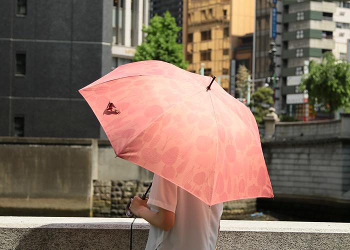 手開き傘の細さとジャンプ傘の利便性を組み合わせ、使いやすさを重視させた傘です。レイングッズブランドのマブワールドと人気ガイドブックことりっぷとコラボしたデザインは、華やかで雨の日が待ち遠しくなる可愛さです。