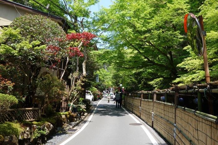 鞍馬山と貴船山の狭間を流れる貴船川。それに沿って何軒もの料理旅館が軒を連ねる料亭街は、季節毎の風情もとても豊かです。