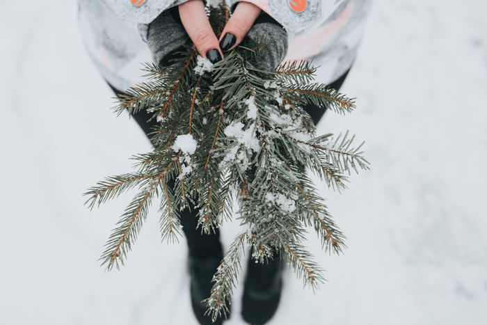 気温が低くなる冬には、体内の血液の巡りが悪くなり、皮膚に十分な栄養が行き届かず、乾燥や肌荒れの原因に。黒大豆やプルーン、ニラ、タマネギなど、血の巡りをよくする食材ととりましょう。また、冬場は寒さから身を守るためにエネルギーを多く使います。消耗した気を補い、新陳代謝の促進や免疫力を高めるネバネバ食品や海藻類を取り入れるとよいでしょう。