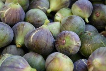 いちじくの原産はアラビア半島南部で、7月~10月頃に木の枝に大きな果実を実らせます。生のいちじくのカロリーは100gあたり約54kcal程度と低カロリーで、水溶性の食物繊維「ペクチン」、むくみ対策に効果の高い「カリウム」、「カルシウム」や「鉄分」などのミネラルといった栄養素を含むことから、美容効果も期待されているようです。女性には嬉しいメリットですね!ただし、ドライいちじくになるとカロリーは高くなりますので食べ過ぎにご注意を。