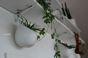 壁にバーやフックがあるときは、プラントハンガーそのものをかけて吊るすこともできます。プラントハンガーの先の形状にもよりますが、かけるところがない場合は、先端にロープなどで輪を作るといいですね。