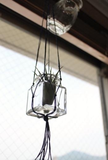 細い紐を使ったプラントハンガーにガラス瓶を合わせると、どこかノスタルジックな印象が生まれます。毎日、すこしずつ水をあげて大切に育てたくなります。