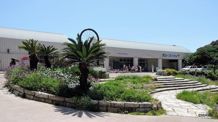 また、公園内には「観音崎自然博物館」があります。観音崎の自然についてわかりやすく展示をしている施設なので、大人はもちろん、お子さん連れも楽しめるスポットです。