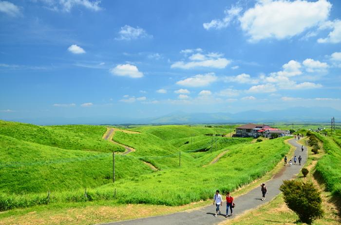 大観峰へ行くには、大観峰茶店に車を停めてから歩いて向かいます。草原の緑と青く澄み渡った空の美しさに癒されつつ、約7~8分程歩くと大観峰に辿り着きます。壮大な風景を眺めながらリラックスしたり、ちょっと散策を楽しんでみたり、思い思いの時間を過ごしましょう♪