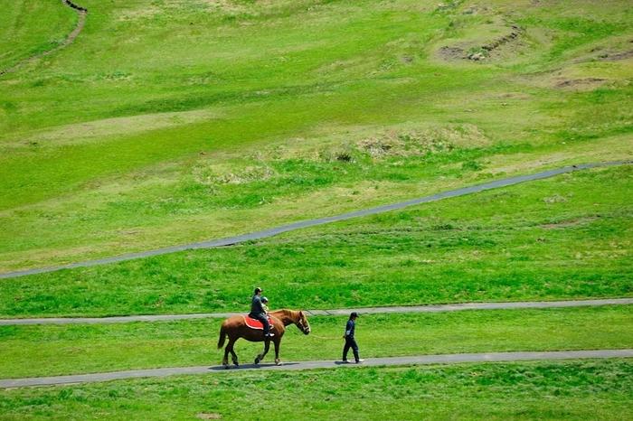 """草千里浜では、大草原の中で乗馬体験ができるんです!スタッフさんが手綱を持つ""""引き馬""""なので、初心者でも安心して乗ることができます。走行距離別に3のコースがあり、お手頃価格から楽しめます。馬に乗ることで、草千里の大自然をより一層ダイナミックに感じることができますよ。"""