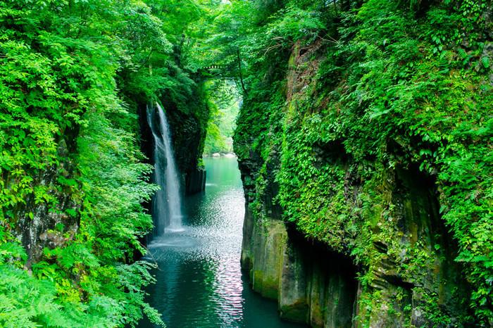 宮崎で自然を満喫するなら、「高千穂峡」は外せません!自然が生み出したダイナミックな景観が楽しめるスポットで、1934年に国の名勝・天然記念物に指定されました。夏は鮮やかな緑が美しく、涼を求めて多くの観光客が訪れます。