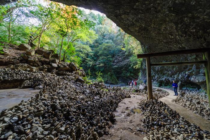 高千穂峡を訪れたら、「天安河原」にもぜひ足を運んでみましょう。この洞窟は、八百万の神が集まり会議したという神話が残る場所です。高千穂峡のパワースポットとしても知られ、洞窟の中には願いを込めて積まれた石が所狭しとあります。