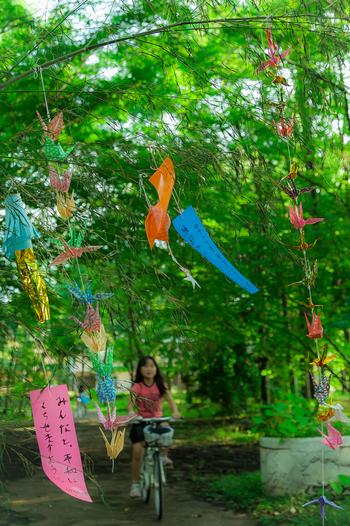 短冊に願い事を書いて笹竹につるすようになったのは江戸時代だと考えられています。現代まで受け継がれてきた行事は、未来にも残していきたいですね!
