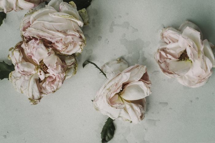 自分で悪いとわかっているのにもかかわらず謝ることができない人というのは、今までどんなことがあってもなあなあにしてなんとなく許されてきた経験から謝ることができなくなっています。