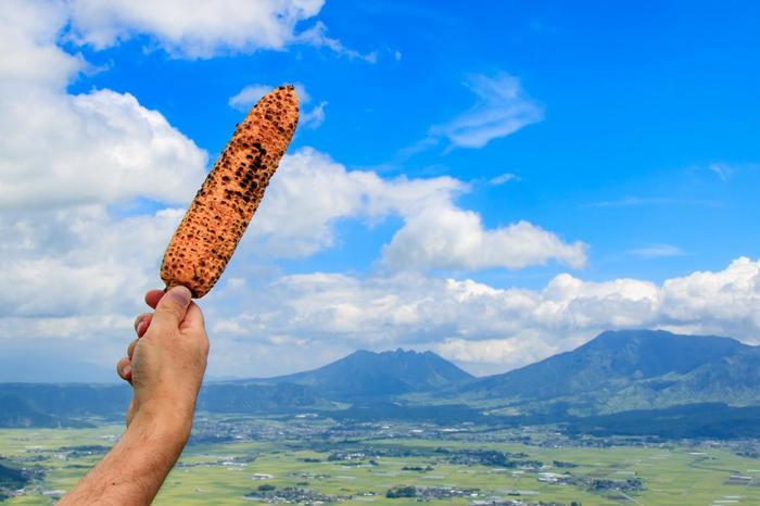 大観峰を訪れた際にぜひ食べてほしいのが、名物の「焼きとうもろこし」。こんがりと焼かれたとうもろこしは、甘みたっぷりで香ばしく絶品です!阿蘇の大自然を眺めながらかぶりつけば、きっと最高の時間を過ごせますよ。