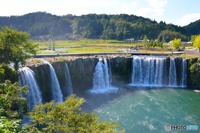 """大分県豊後大野市の原尻の滝は、のどかな田園風景に突然出現するちょっぴり珍しい滝です。弧を描くような幅120m高さ20mの大迫力の姿は、日本の滝百選にも選ばれ""""東洋のナイアガラ""""とも評されています。約9万年前の阿蘇の噴火で火砕流が急激に冷え固まったものが、長い年月をかけて緒方川によって削られたことで生まれました。"""